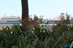 Parque de Santa Catarina Funchal Madeira 14.11.03 - Mallorca nach Gran Canaria AIDAblu Kanaren