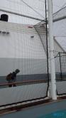 Verschwundene Bälle Atlantik 17.04.15 - Unsere Jubiläumsfahrt von Gran Canaria nach Hamburg AIDAsol Westeuropa