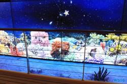Vorderes Treppenhaus AIDAstella Mittelmeer 16.07.24 - Die kleinen Perlen des Mittelmeers AIDAstella