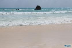 Horseshoe Bay Hamilton 18.10.03 - Big Apple, weißer Strand am türkisen Meer, riesiger Sumpf AIDAluna