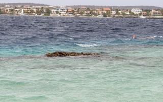 Kralendijk Bonaire 19.04.08 - Strände der Karibik über den Atlantik AIDAperla