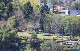 Funchal Madeira 14.04.16 - Karibik nach Mallorca AIDAbella Transatlantik