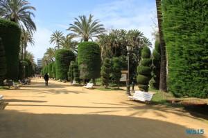 Parque Genovés Cádiz 13.03.26 - Kanaren Madeira Spanien Portugal Frankreich AIDAbella Westeuropa