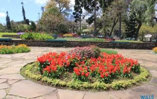 Parque de Santa Catarina Funchal Madeira 13.03.23 - Kanaren Madeira Spanien Portugal Frankreich AIDAbella Westeuropa